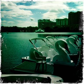 Lake eola swan boats